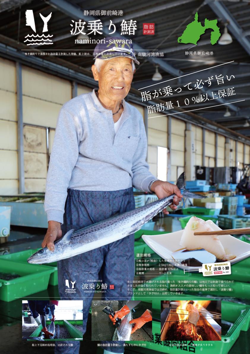 波乗り鰆ポスター写真